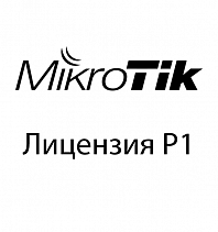 Mikrotik Cloud Hosted Router P1